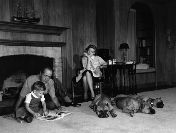Humphrey Bogart, Lauren Bacall and their son, Stephen, with their pet boxers, Harvey, George and Baby, in their living room at home in Los Angeles1952© 1978 Sid Avery - Image 0015_0002