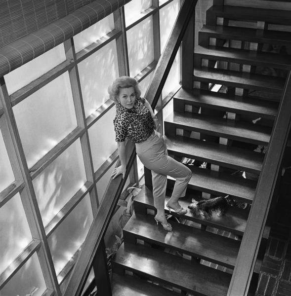 Zsa Zsa Gabor at home1958© 1978 Sid Avery - Image 0018_0250