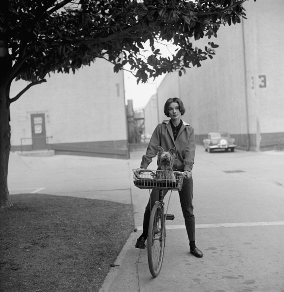 Audrey Hepburn with her pet dog, Famous, on the Paramount studio backlot 1957 © 1978 Sid Avery - Image 0033_0008