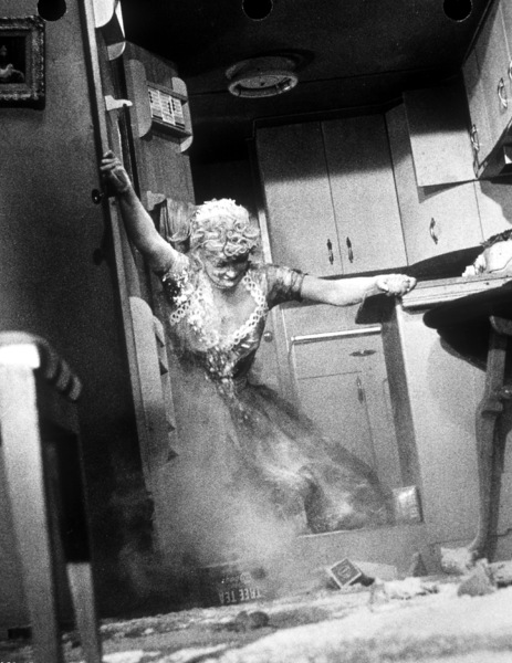 """""""Lucille Ball""""The Long, Long Trailor""""1954 MGM - Image 0069_0794"""