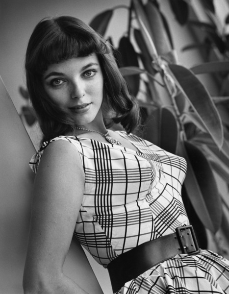 Joan Collins1955© 1978 Sid Avery - Image 0299_0228