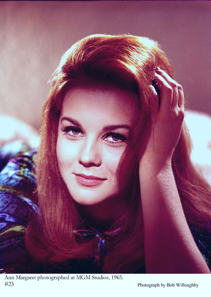 Ann-Margret photographed at MGM Studios, 1965 © 1978 Bob Willoughby - Image 0332_0208