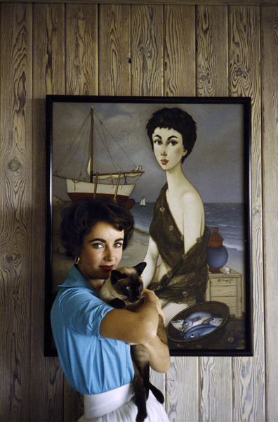 Elizabeth Taylor at her Beverly Hills home with her pet Siamese cat, Coffee (1953 Phillip Noyer painting behind head)circa 1956© 1978 Sanford Roth / A.M.P.A.S. - Image 0712_5316