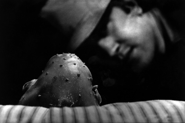 """Eraserhead""Director David Lynch1977 Libra Films** I.V. - Image 23005_0001"