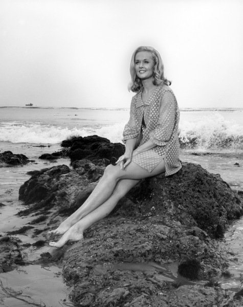 """Tippi Hedren in """"Run for Your Life"""" (Episode: """"Someone Who Makes Me Feel Beautiful"""")1965** B.D.M. - Image 24293_0312"""