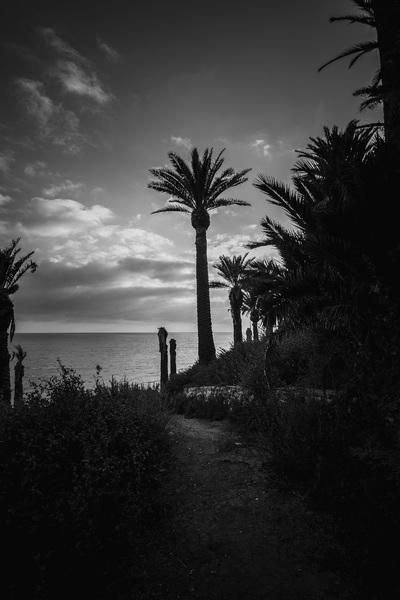 San Pedro, California coast2017© 2017 Jason Mageau - Image 24361_0278
