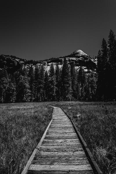 Yosemite National Park, California2016© 2016 Jason Mageau - Image 24361_0334