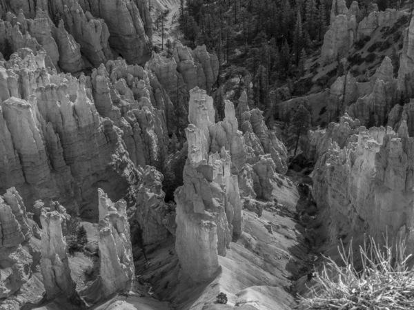 Bryce National Park, Utah2013© 2017 Viktor Hancock - Image 24366_0108