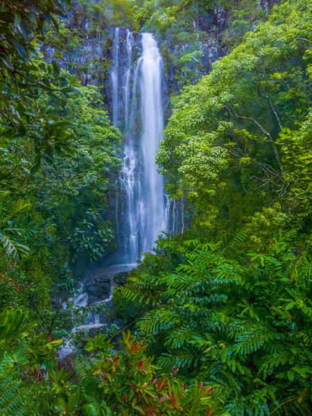 Road to Hana, Maui, Hawaii2013© 2017 Viktor Hancock - Image 24366_0148