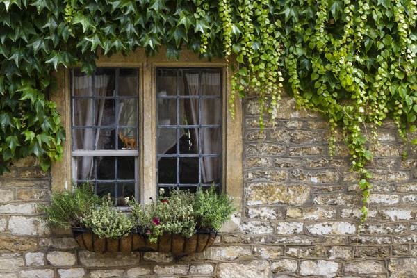 Castle Combe, England2015© 2015 Deede Denton - Image 24368_0096