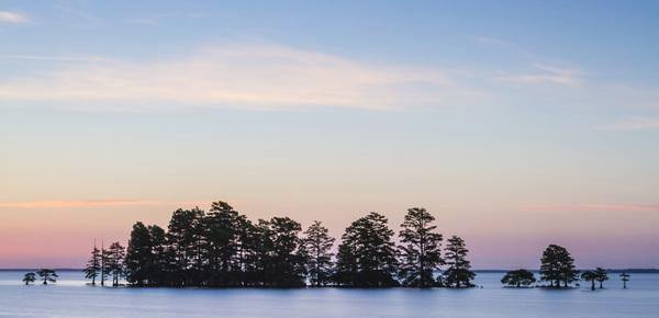 Lake Mattamuskeet, North Carolina2014© 2014 Deede Denton - Image 24368_0176