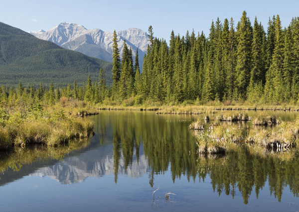 Vermilion Lakes, Banff, Alberta, Canada2017© 2017 Deede Denton - Image 24368_0376