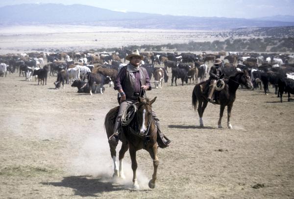"""The Cowboys""John Wayne1972 Warner Brothers © 1978 David Sutton - Image 3370_0663"