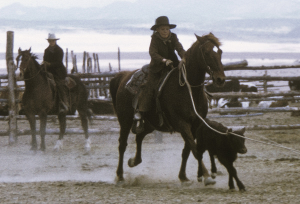 """""""The Cowboys""""1972 Warner Brothers © 1978 David Sutton - Image 3370_0670"""