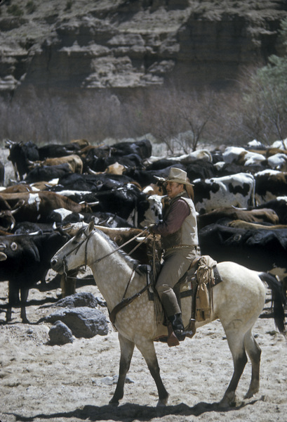 """The Cowboys""John Wayne1972 Warner Brothers © 1978 David Sutton - Image 3370_0684"