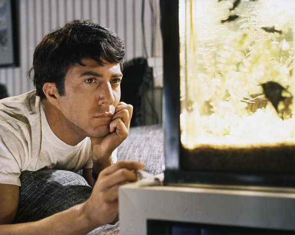 """The Graduate""Dustin Hoffman1967 Embassy Pictures Corporation** I.V. - Image 3461_0383"