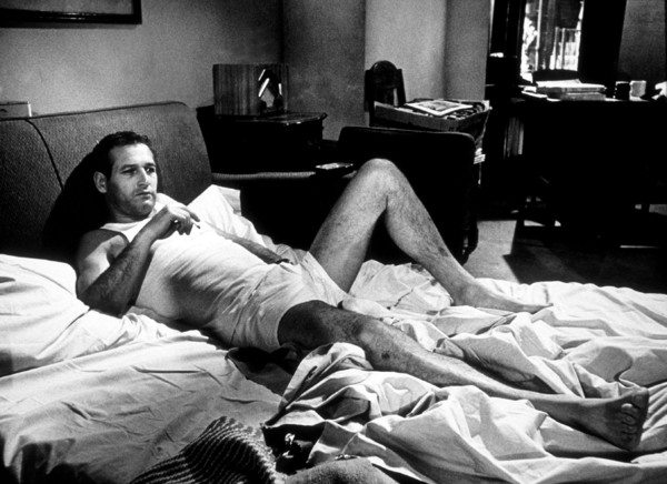 """Harper,""Paul Newman.1966 Warner © 1978 David Sutton - Image 3477_0100"
