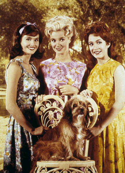 """Petticoat Junction""Linda Kaye Henning, Lori Saunders, Gunilla Hutton1965Photo by Gabi Rona - Image 3650_0005"