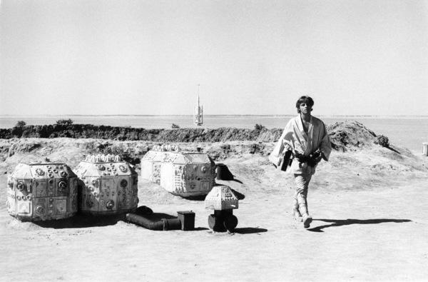 """""""Star Wars"""" Mark Hamill1977 Lucasfilm© 1978 John Jay - Image 3748_0168"""