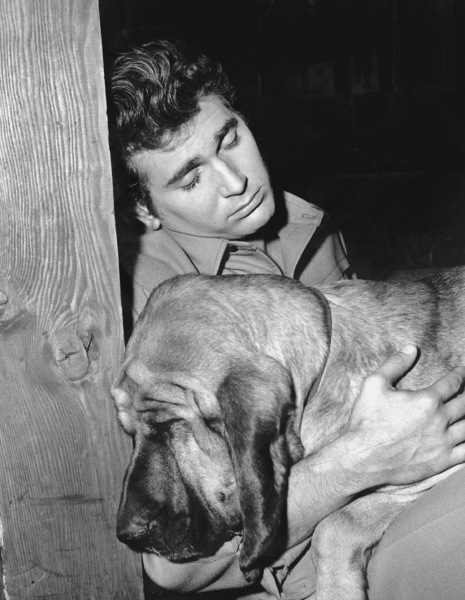 """Bonanza""Michael Landon in ""Hound Dog""1965**I.V. - Image 5424_0078"