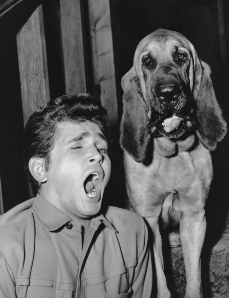 """""""Bonanza""""Michael Landon in """"Hound Dog"""" 1965**I.V. - Image 5424_52"""