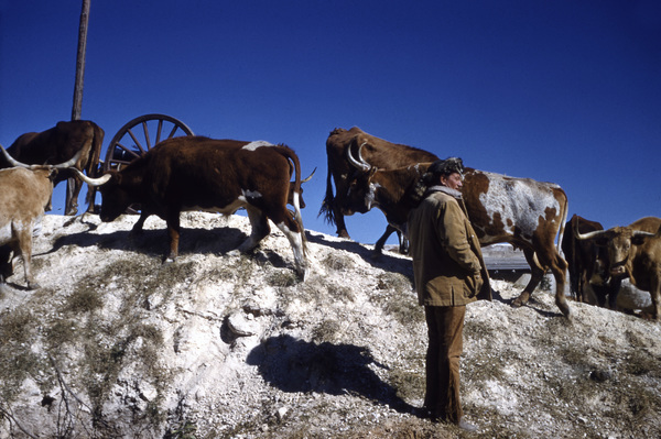 """The Alamo""John Wayne1960 United Artists ** I.V. - Image 5499_0038"