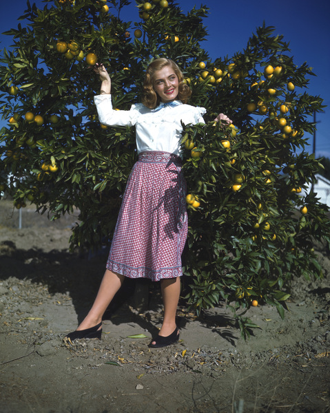 Lizabeth Scottcirca 1947Photo by Bud Fraker**I.V. - Image 5839_0036