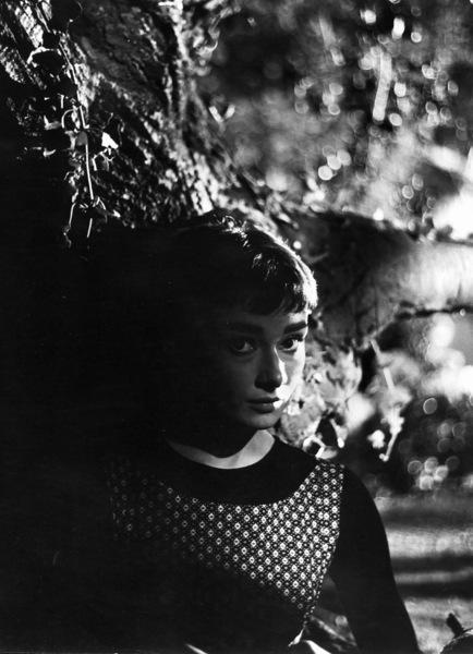 """Sabrina""Audrey Hepburn1953© 2000 Mark Shaw - Image 8124_0038"