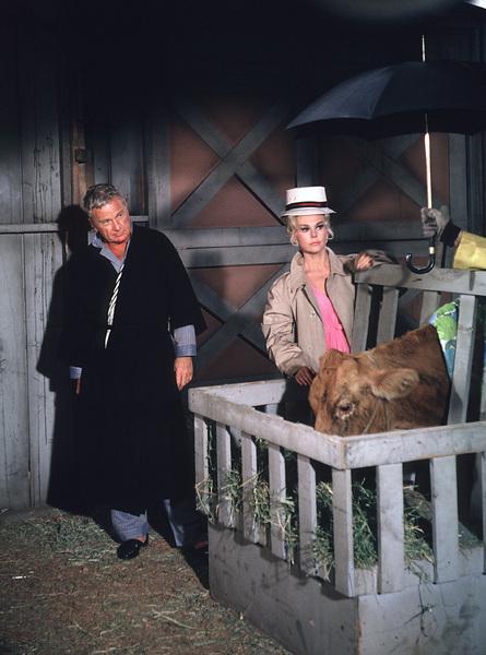 """Green Acres""Eddie Albert, Eva Gabor1965 CBS © 1978 Gene Trindl - Image 9271_0023"
